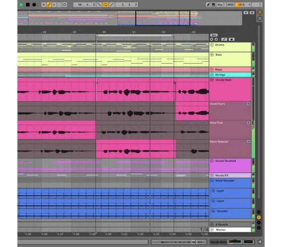 Ableton Live 11 Suite (Education) Main